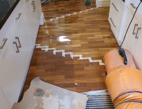 Renaissance Parquet Insurance repairs!